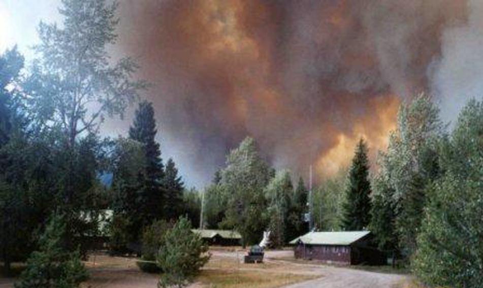 Moose Fire