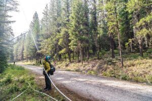 A firefighter soaks down the vegetation on the south side of the Hay Creek Road - Chris Peterson