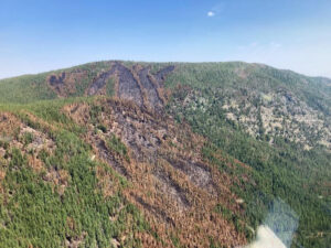 East side of Hay Creek Fire showing a mix of burned and unburned areas on August 12, 2021 - USFS